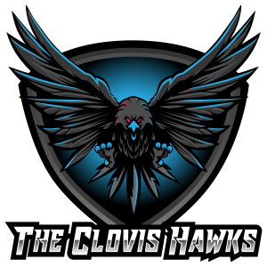 The Clovis Hawks Gaming Zombies Review